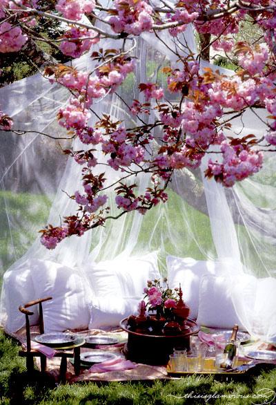 Весенняя свадьба 2013 лучшие банкеты на