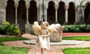angel fg gws 3
